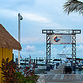 Bimini Guy Harvey Outpost by Ed Gleichman