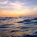 Bimini Sunset by Carey Chen