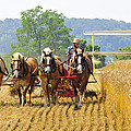Binding Wheat
