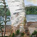 Birch by Christine Dekkers