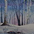 Birch Dawn by Sally Rice