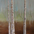 Birch In The Mist by Pat Thomson