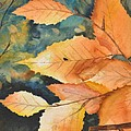 Birch Leaves by Sally Rice