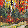 Birch Trail by George Burr
