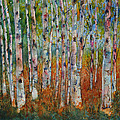 Birch Tranquility by Wendy Provins