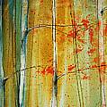 Birch Tree Forest - Left by Jani Freimann