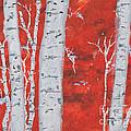 Birch Woods by David Jackson