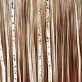 Birches In Motion by Mary Jo Allen