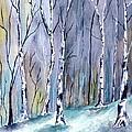 Birches In The Forest by Brenda Owen