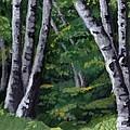 Birches by Jesslyn Fraser