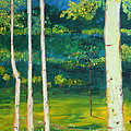 Birches by Stefan Duncan