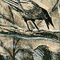 Bird 1 by Matthew Howard