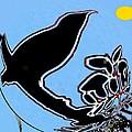 Bird And Sun by Anand Swaroop Manchiraju