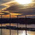 Bird - Boat - Bay by Chriss Pagani