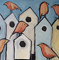 Bird Condo Association by Tim Nyberg