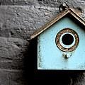 Bird House Of Blue By Diana Sainz by Diana Raquel Sainz