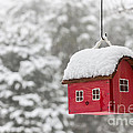Bird House With Snow In Winter by Elena Elisseeva