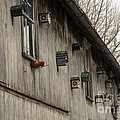 Bird Houses by Jay Ressler