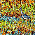 Bird In The Reeds by Alice Gipson