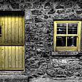 Bird In The Window by Nigel R Bell
