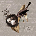 Bird Nest - 02v23c2b by Variance Collections