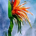 Bird Of Paradise by Mickey Bissell