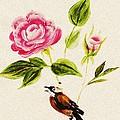 Bird On A Flower by Anastasiya Malakhova