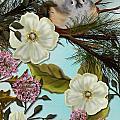Bird On Pine Branch by Nancy Long