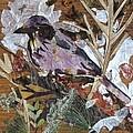 Bird Scubjoy by Basant Soni