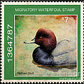 Bird Stamp by Steve McKinzie