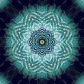 Bird Tail Lotus Mandala by Deborah Smith