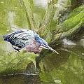 Bird Whirl by James Ekstrom