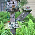 Birdhouse Bed And Breakfast by Gordon Elwell