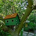 Birdhouse In A Tree by Denise Mazzocco