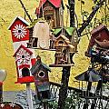 Birdhouse Subdivision by Elvis Vaughn