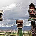 Birdhouses by Image Takers Photography LLC