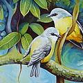 Birds by Elena Oleniuc