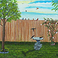 Birds In The Backyard by Brenda  Drain