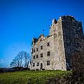 Birds Of Ireland's Leamaneh Castle by James Truett