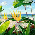 Birds Of Paradise by Steve Simon