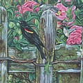Birds On A Fence by Diann Baggett