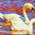 Birds On The Lake by Jeffrey Kolker