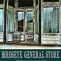 Birdseye General Store by Julie Dant