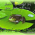 Birthday Greeting Card - Bullfrog On Lily Pad by Mother Nature