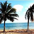 Biscayne Bay Florida by Dora Sofia Caputo Photographic Design and Fine Art