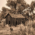 Bishop Homestead by Ray Finch