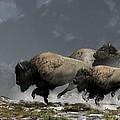 Bison Stampede by Daniel Eskridge