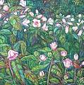 Bisset Park Hibiscus by Kendall Kessler