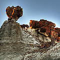 Bisti Land Form 3 by Vivian Christopher