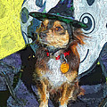 Black And Tan Chihuahua - Such A Good Little Witch by Rebecca Korpita